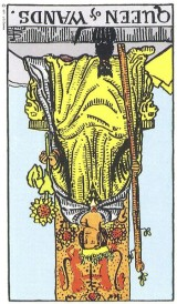 The Daily Draw: Queen of Wands,Reversed
